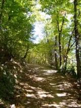 Sentiero_del_venda